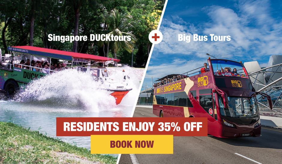 Duck Tours and Big Bus