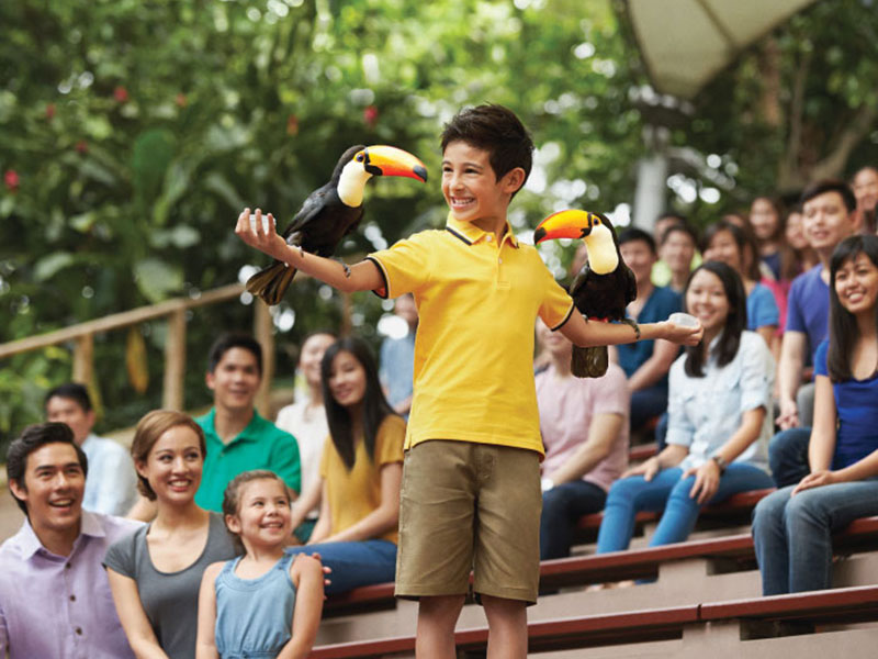 Jurong Bird Park Free & Easy with 2-way transfer