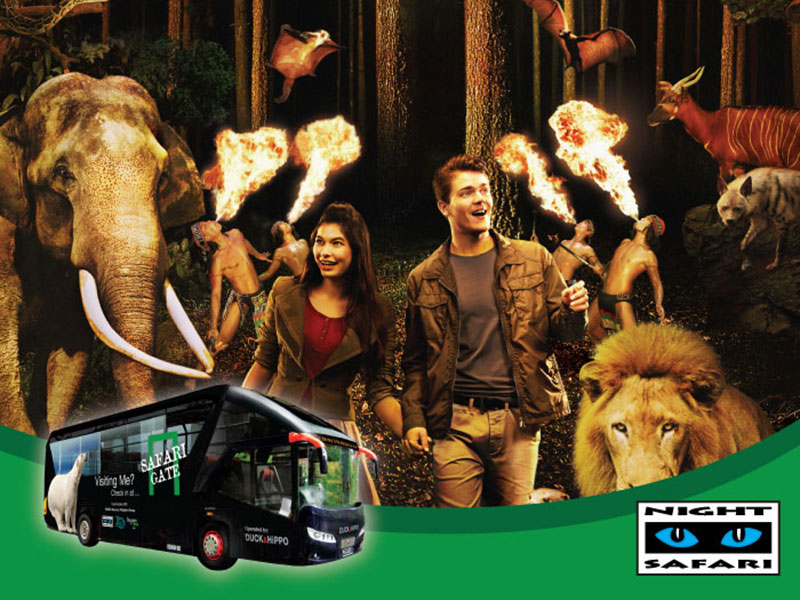 Night Safari + 2-way Transfers