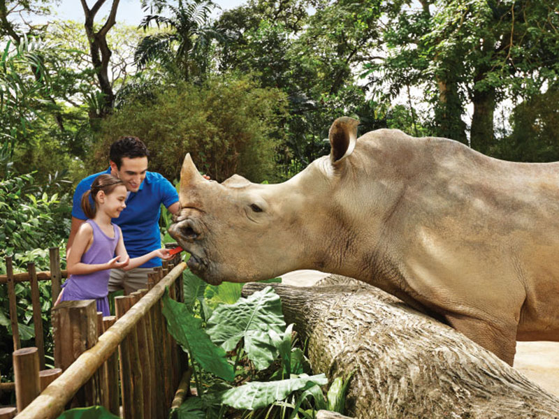 Singapore Zoo Free & Easy with 2-way transfer