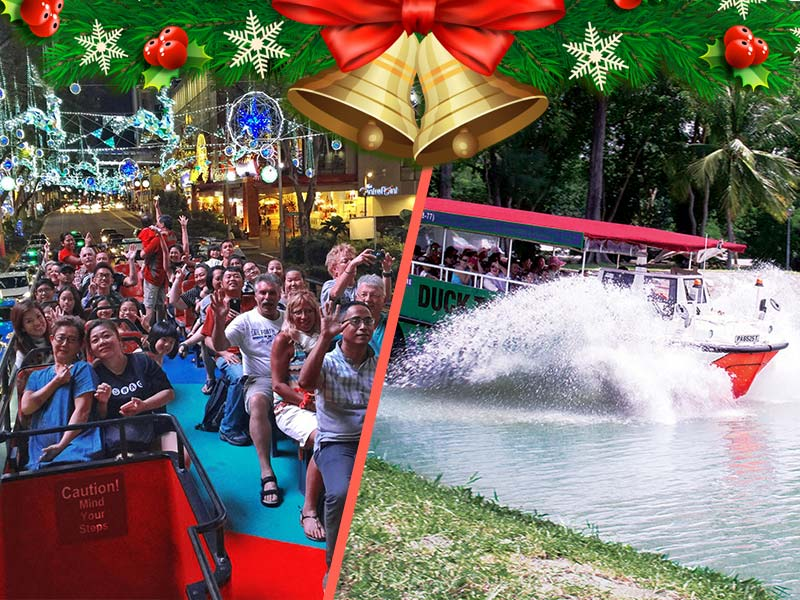 HiPPO Christmas Orchard Light-Up Tour + DUCKtours